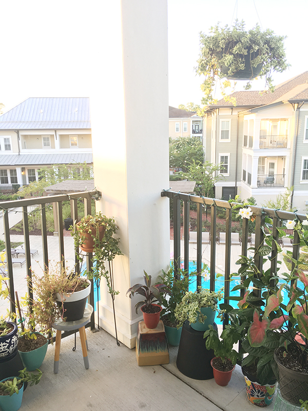 Apartment Balcony filled with plants